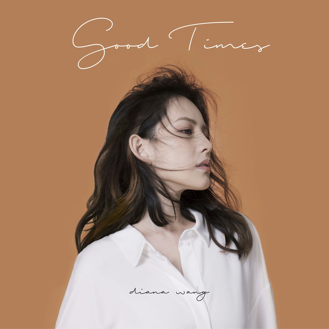 Diana Wang (王詩安) – Good Times [FLAC + MP3 320 / WEB] [2018.05.25]