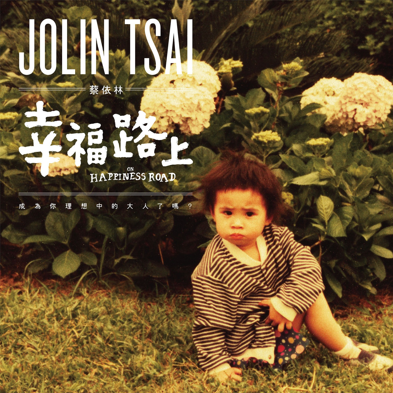 Jolin Tsai (蔡依林) – On Happiness Road (幸褔路上) [FLAC + MP3 320 / WEB] [2017.11.20]