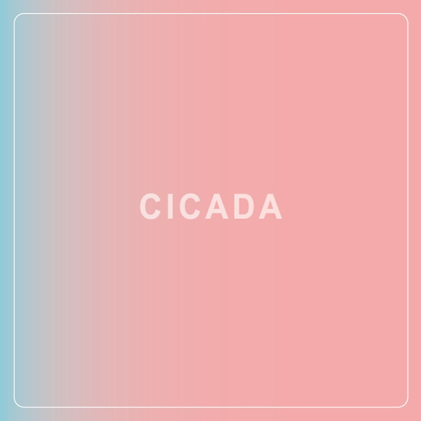 婵/CICADA – ふれてほしい [FLAC + MP3 320 / WEB] [2018.10.02]