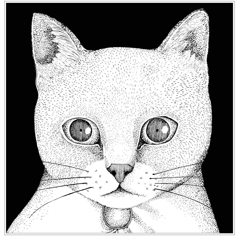 テンテンコ (Tentenko) – ALL YOU NEED IS CAT~猫こそはすべて [FLAC + MP3 VBR / CD] [2018.12.05]