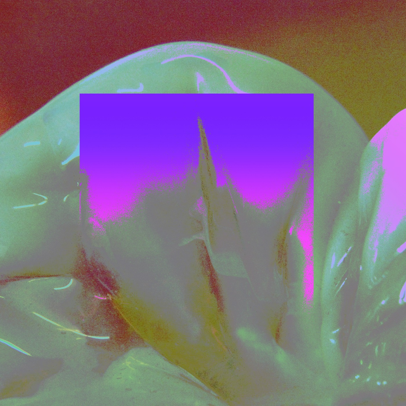 NOAH – Thirty [FLAC / WEB] [2019.10.18]