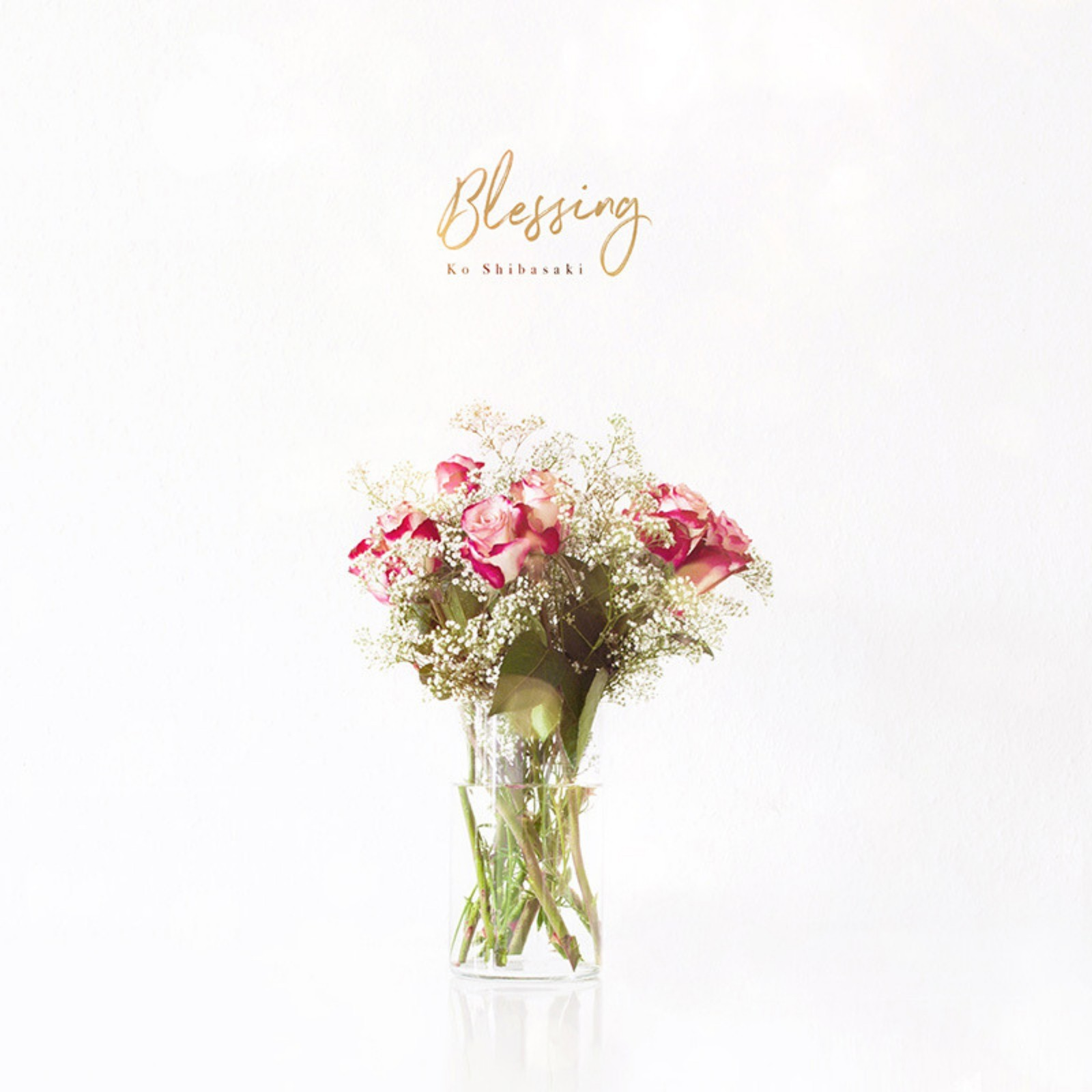 柴咲コウ (Kou Shibasaki) – Blessing [FLAC / 24bit Lossless / WEB] [2019.04.26]