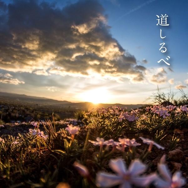 絢香 (ayaka) – 道しるべ [Mora FLAC 24bit/48kHz]