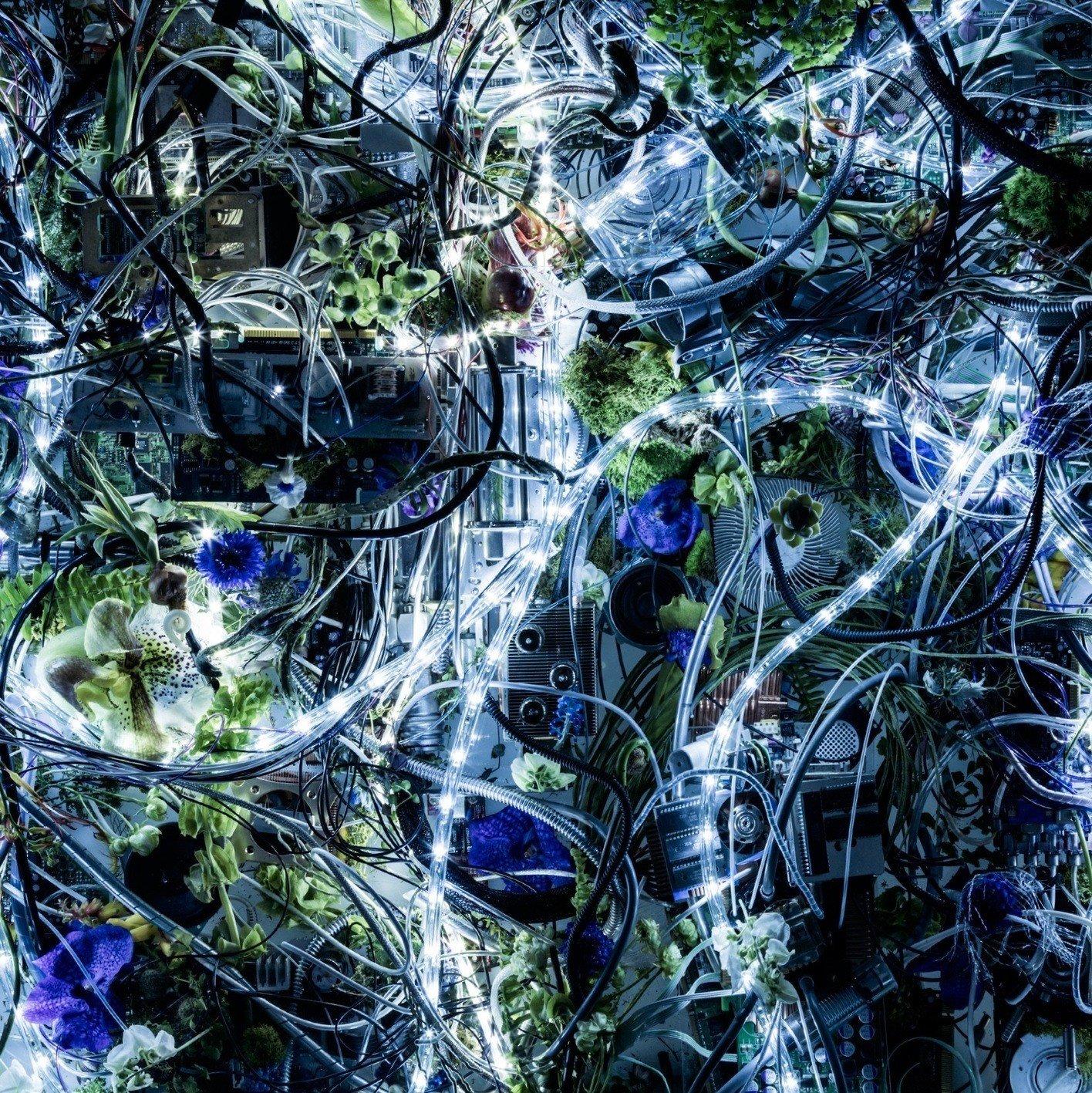 Aimer – ninelie EP [FLAC / 24bit Lossless / WEB] [2016.05.11]